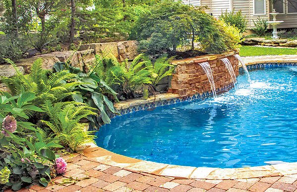 Swimming Pool Landscaping 5 Plant Varieties To Consider