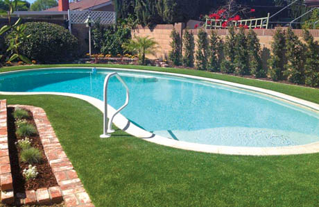 Freeform-Gunite-Pool-with-All-Grass-Deck.jpg