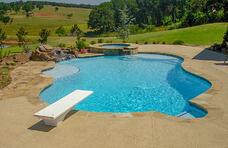 free-form-gunite-pool-with-diving-board