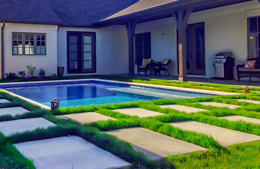 ornamental-grass-around-swimming-pool