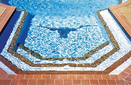 pool-with-longhorn-cattle-mosaic.jpg