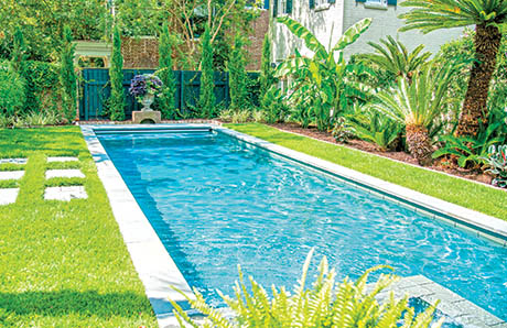 Rectangular Pool With Steps And Spa