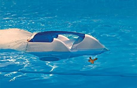 swimming-pool-cleaner.jpg
